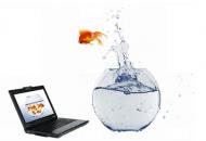 conseil-en-informatique-a-lille-pour-particuliers-et-professionnels