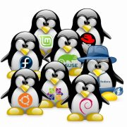 services-linux-a-paris