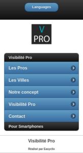 visibilite-pro-mobiles-1